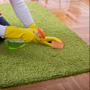 Green Carpet Cleaning, Dealing with Urine Smell & Cleaning Oriental Rugs
